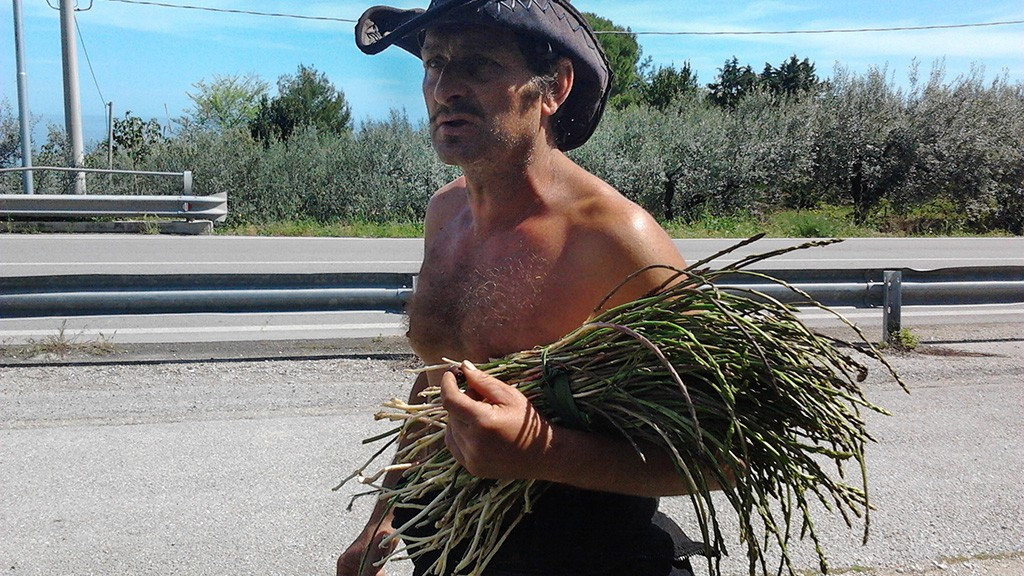ANTONIO AND THE WILD ASPARAGUS, FOSSACESIA