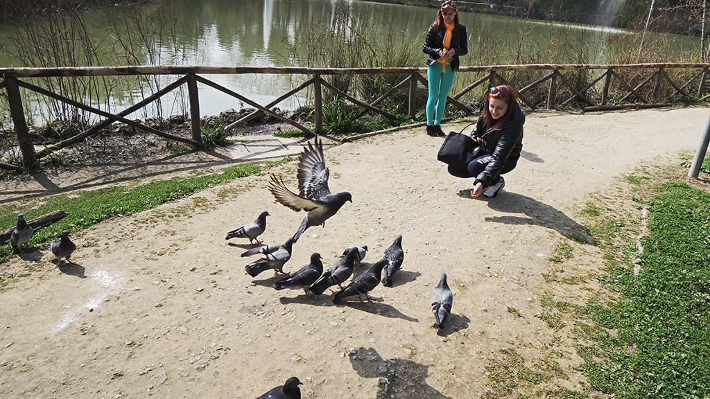 SOME GIRLS GIVE TO PIGEONS THEIR FEED AT PINETA DANNUNZIANA